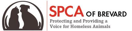 SPCA of Brevard, www.spcanorthbrevard.com